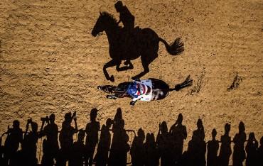 Horse Shadow Adrian Dennis