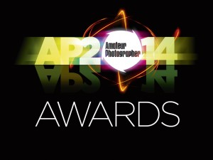 AP Awards 2014