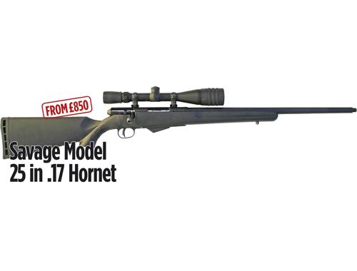 Savage Arms Model 25 Lightweight Varminter-T Bolt Action Rifle .17 ...